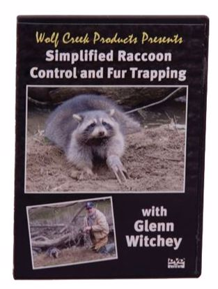 Picture of DVD-WCPRACCOON
